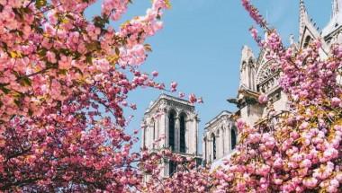 Du lịch mùa xuân kinh đô ánh sáng Paris có gì HOT?