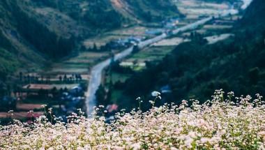 Trọn gói Tour du lịch Hà Giang 4 ngày 3 đêm hấp dẫn