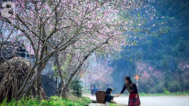 Tất tần tật du lịch Hà Giang có những gì?