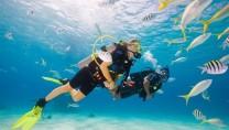 Lặn ngắm san hồ tại Phú Quốc – tại sao không?